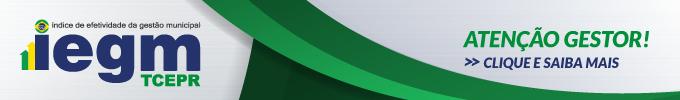 Banner IEGM fixo